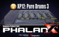 Vengeance Producer Suite – Phalanx XP12 Pure Drums 3
