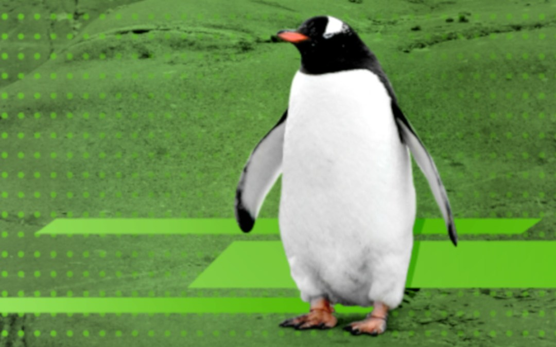 Distribuzione GNU/Linux