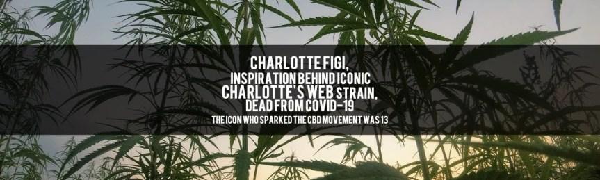 charlotte figi carlotte's web dead at 13