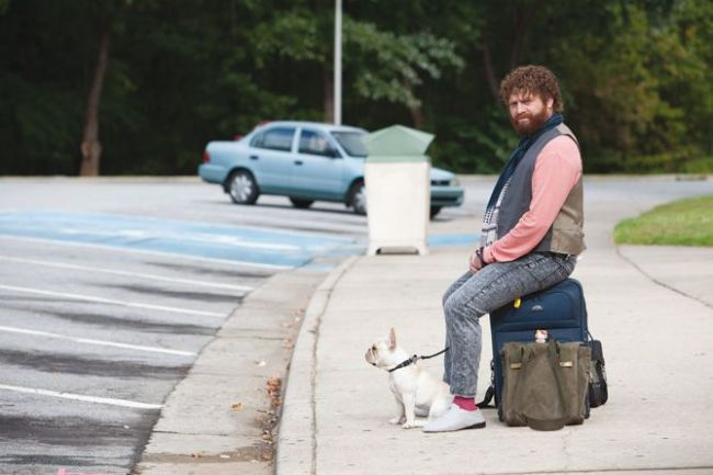 Zach Galifianakis (Due Date)