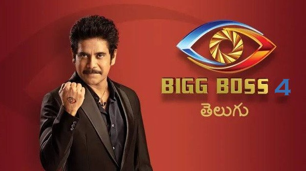 Bigg Boss Telegu Season 4 Auditions