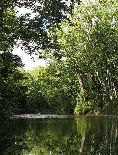 River 3 Sept 2016