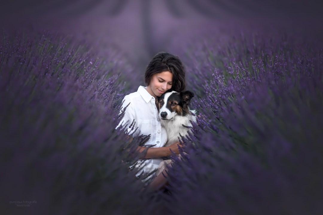 photographe canin france photographie canine chiens artistique audrey bellot photographe pour chiens auvergne portrait animalier workshop formation animaux