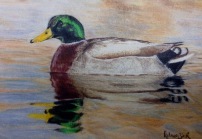 Colored pencil drawing by Kelsey Zink