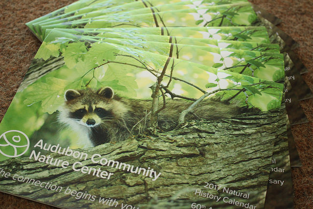 The Audubon Community Nature Center is celebrating its 60th anniversary with a natural history calendar that features stories of how wildlife has changed in the last 60 years as well as photos of staff, volunteers and visitors from the past.