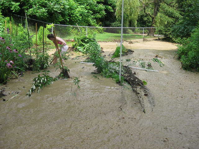 Flooding by Sarah Hatfield