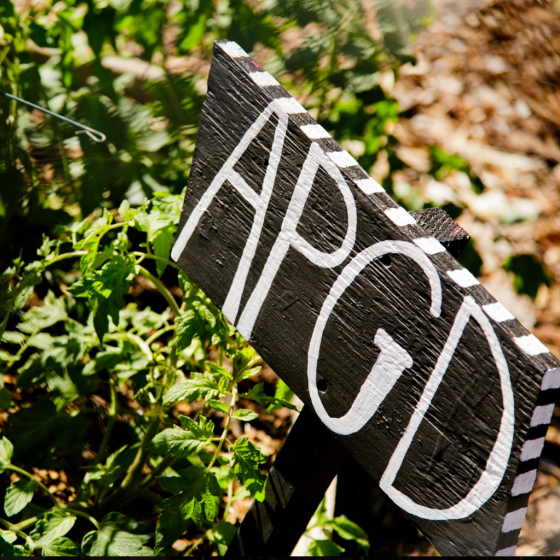 Wooden sign in a garden that says APGD in white letters