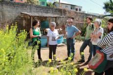 Visita à horta Frutos da União, no bairro Ribeiro de Abreu, BH.