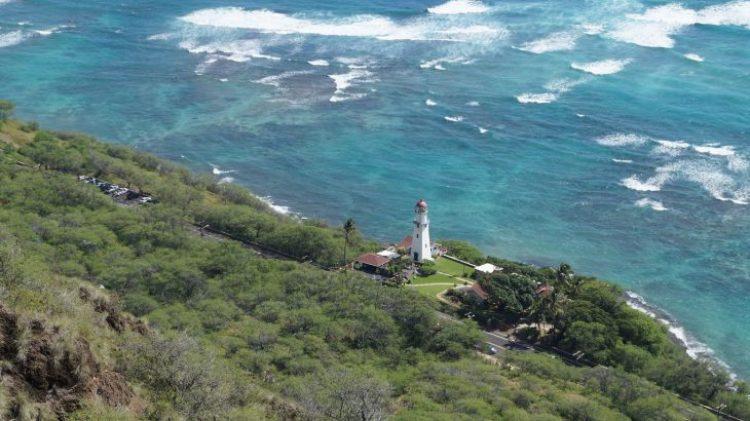 Leuchttum auf Oahu