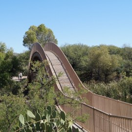 Brücke im Patagonia Park
