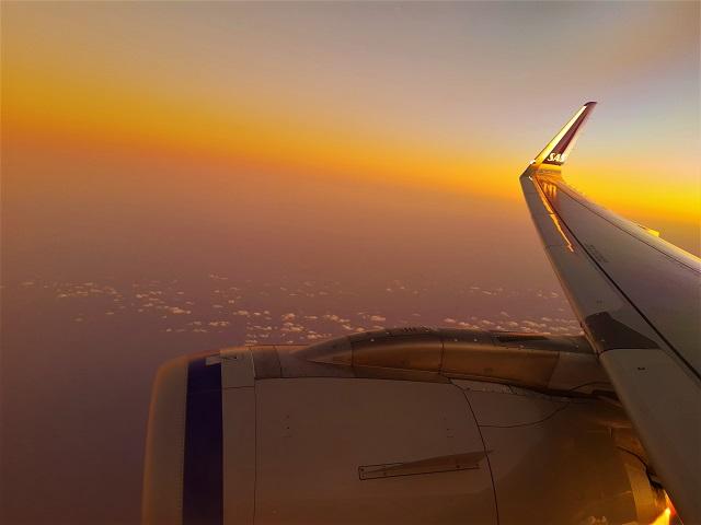 Warum wir mit Scandinavian Airlines fliegen und davon profitieren