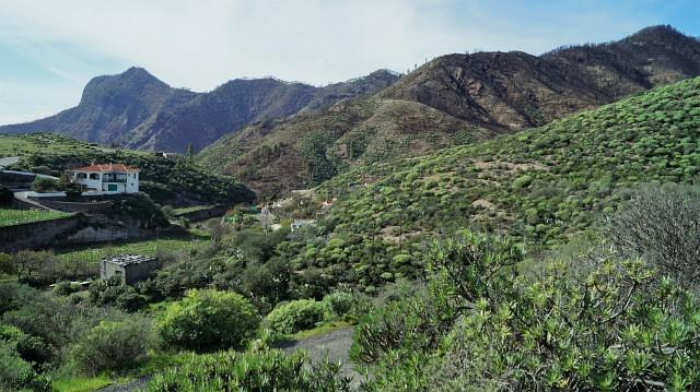 Gran Canaria - Der Norden der Insel ist mächtig grün
