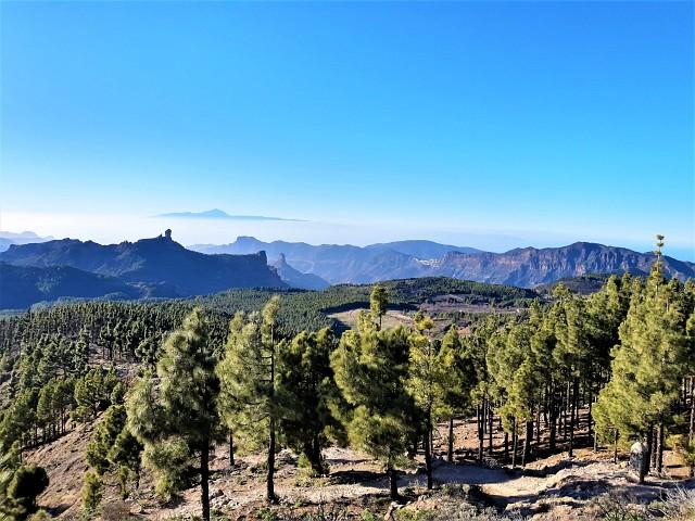 Die Aussicht vom Pico de las Nieves ist fantastisch - Urlaub auf Gran Canaria