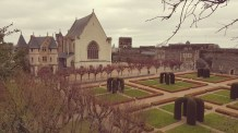 Angers Chateau (10)