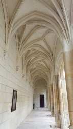 Angers maisons médiévales (17)