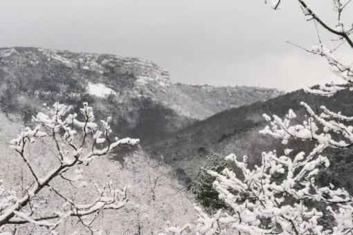 neige_vercors_01_2017