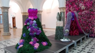 Blumen Bahlmann