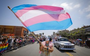 ley caminar siendo trans new york