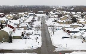 tormenta de nieve uri viola