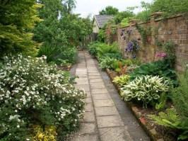 gardening - 20160412-crabtree b