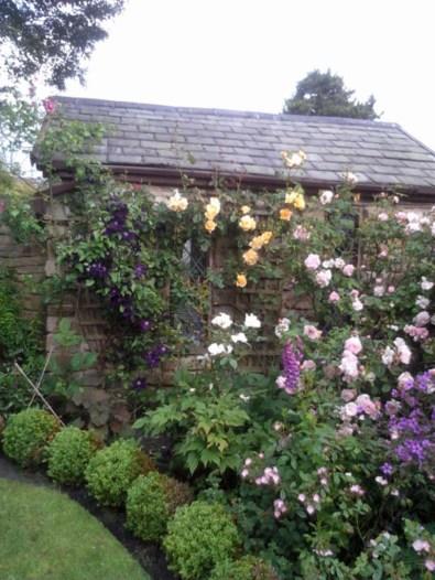 gardening - 20160412-crabtree c