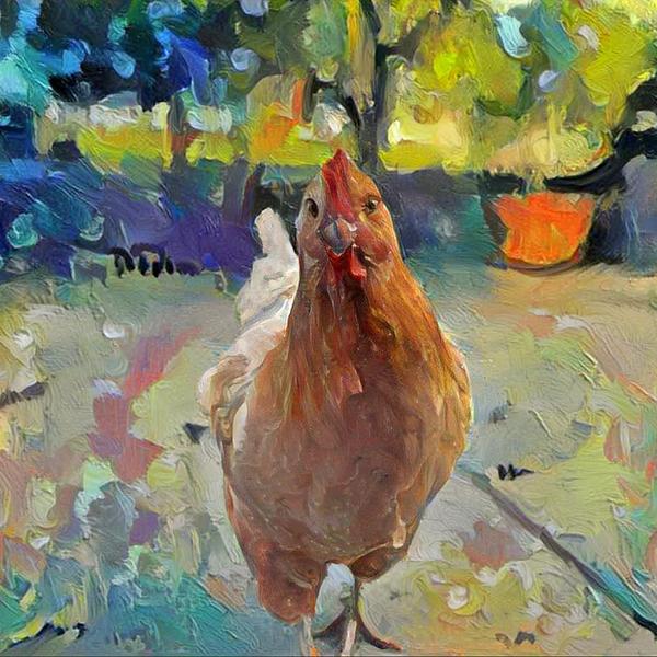 AugiDog Chicken Pet Canvas