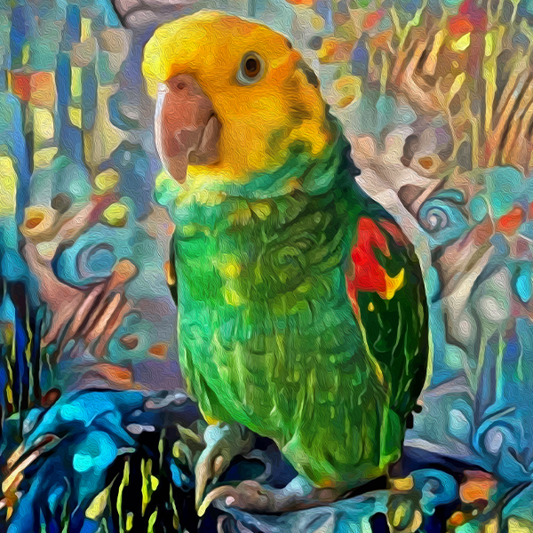AugiDog Parrot Pet Canvas