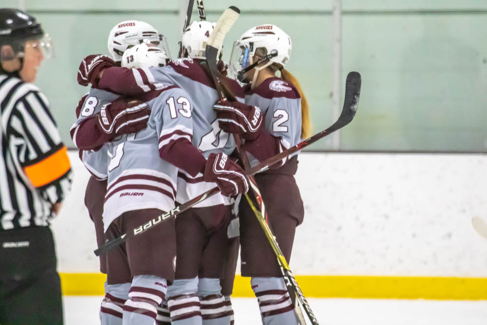 Women's hockey clinches spot in MIAC playoffs