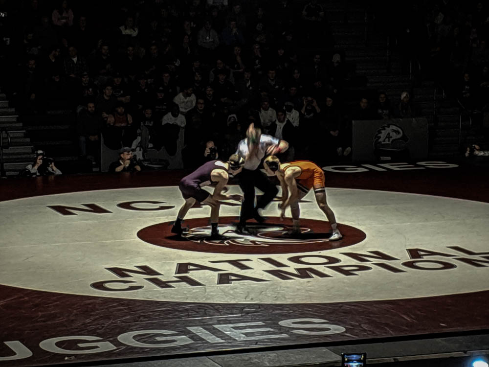 Wrestling falls to Wartburg in Battle of the Burgs