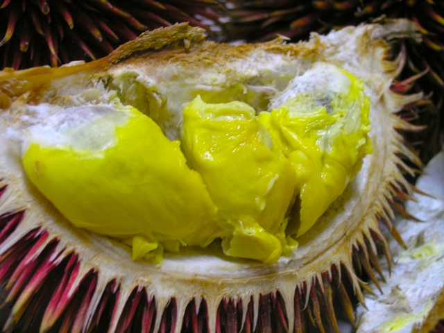 Behold The Red Durian! (3/4)