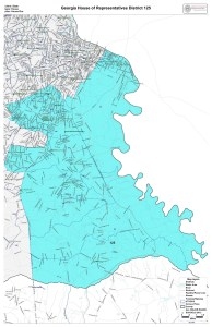 GA House District 125 map