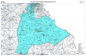 GA House District 126 map