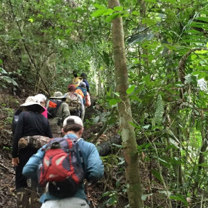 Students and guides hike in Ecuador. Photo by Emily Reasor.