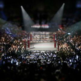 wrestling boxing mma