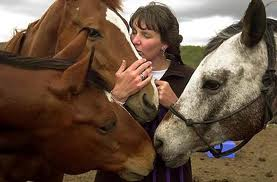 services_equineTherapy