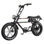 750W Motor 20 Inch Fat Tire Cruiser Retro Ebike