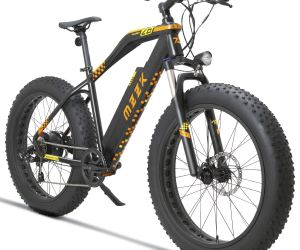 Electric Mountain Snow Bike