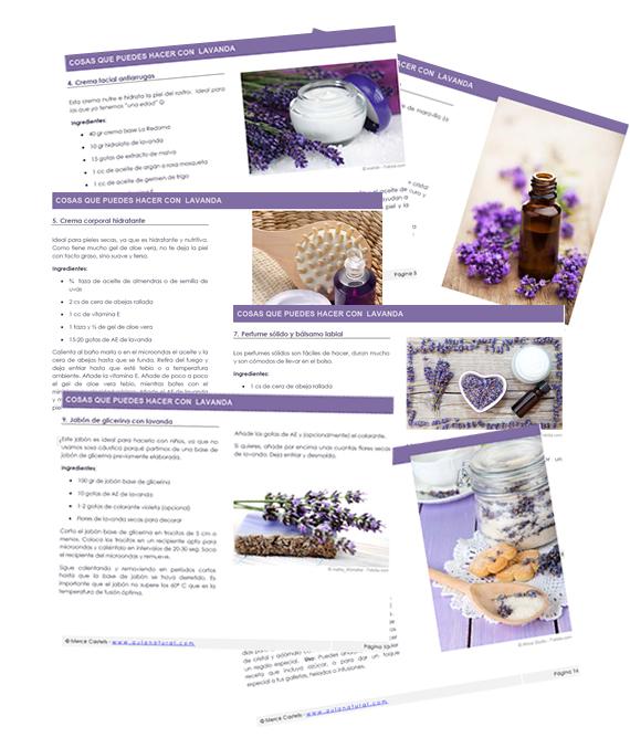 eBook: Cosas que puedes hacer con flores de lavanda