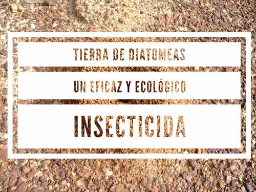 Tierra de Diatomeas. Un eficaz y ecológico insecticida