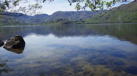 Aguas tranquilas en Viquiella
