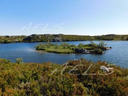 La isla de la laguna del Cuadro