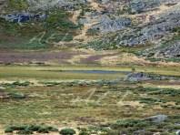 Zona más colmatada y de turbera (al oeste)