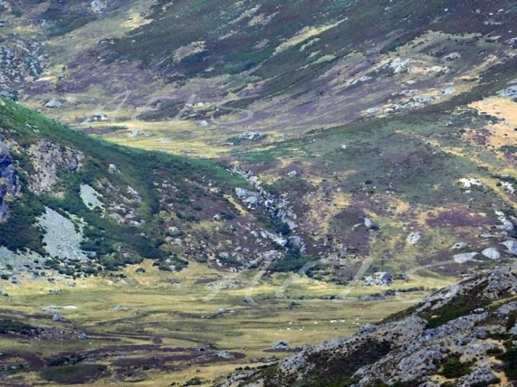 El valle de turbera del Maiserón, en las faldas del Trevinca