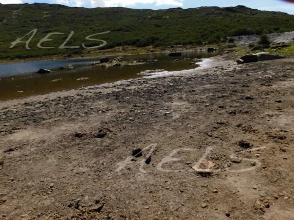 Orillas del embalse con un gran banda árida y suelos llenos de materia orgánica y excrementos del ganado.