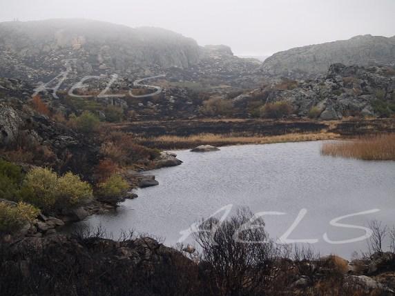 20 de octubre de 2005. Panorámica de la turbera de la Roya tras el incendio y el llenado parcial de la cubeta por las lluvias.