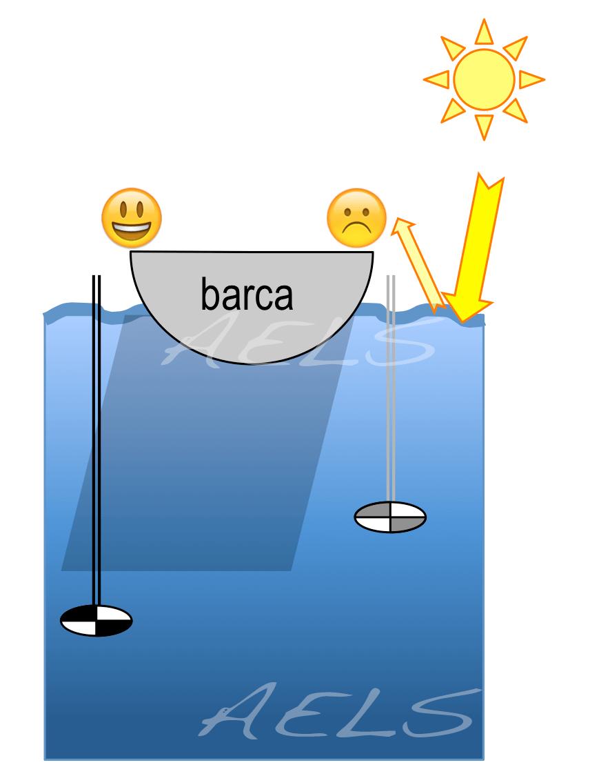 Figura 3B