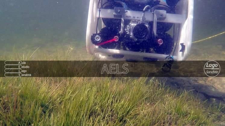 ROV trabajando en un zona somera sin ser pisoteada o alterada.