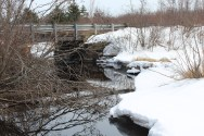 Trout brook and bridge