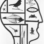 Washington State Historical Society/Art ResourceVirna Haffer: Inside the Mind of Man, circa 1935-1942