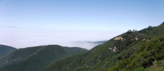 Bradford Ridge Path (8)